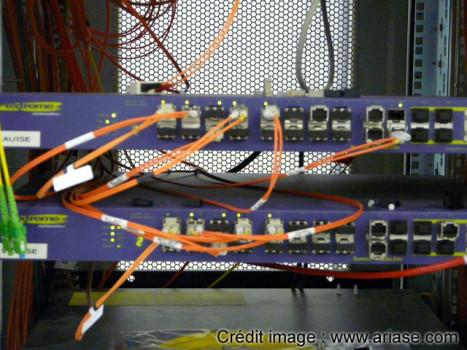 fibre-orange-03