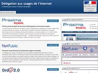 La Délégation aux usages de l'Internet