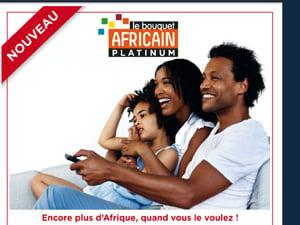 bouquet africain platinum