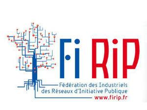 Observatoire RIP 2017 de la FIRIP